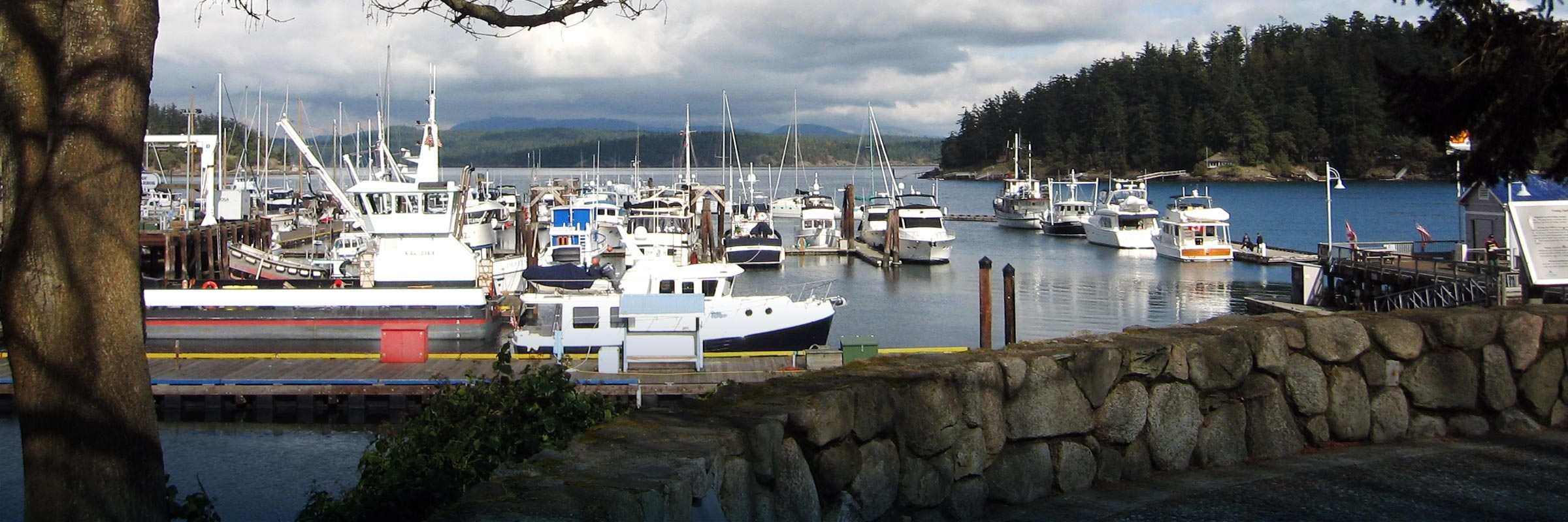Watch whales in beautiful Friday Harbor, just outside of Seattle, WA