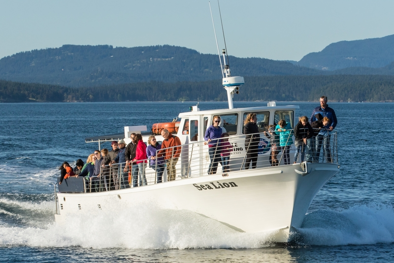 M/V Sea Lion from Friday Harbor