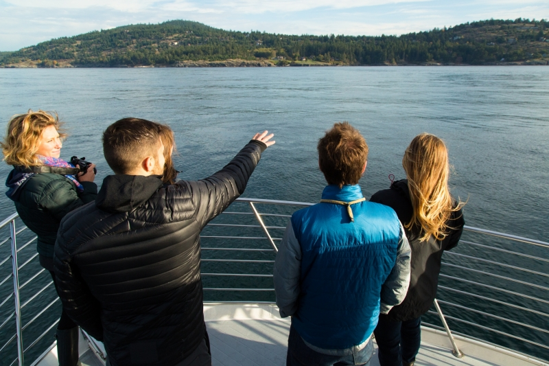 Searching for Southern Resident Orcas