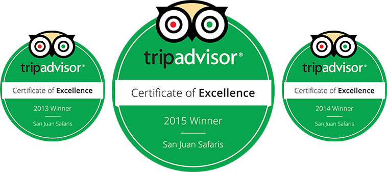 San Juan Safaris Trip Advisor Certificate of Excellence